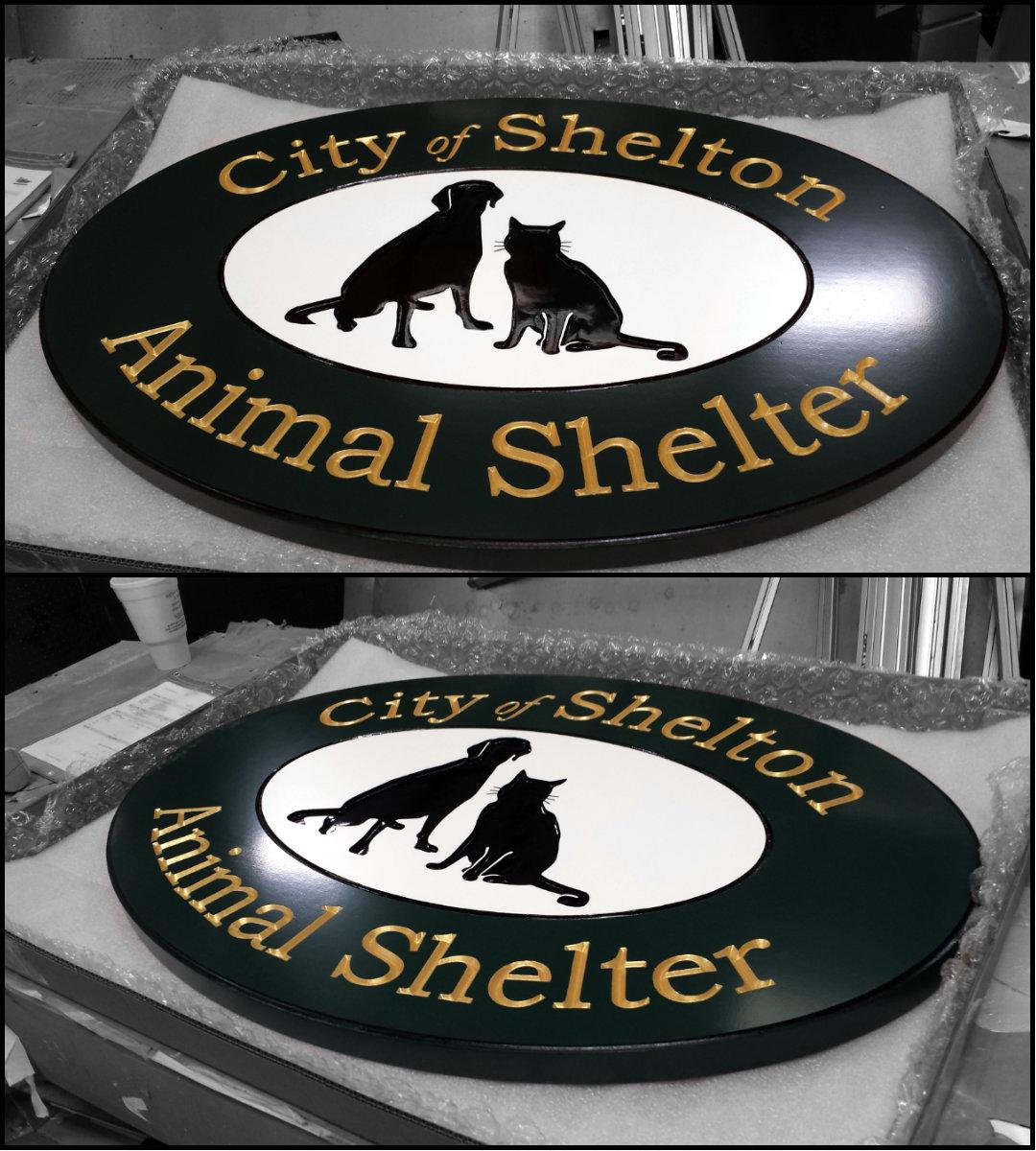Animal Shelter Collage