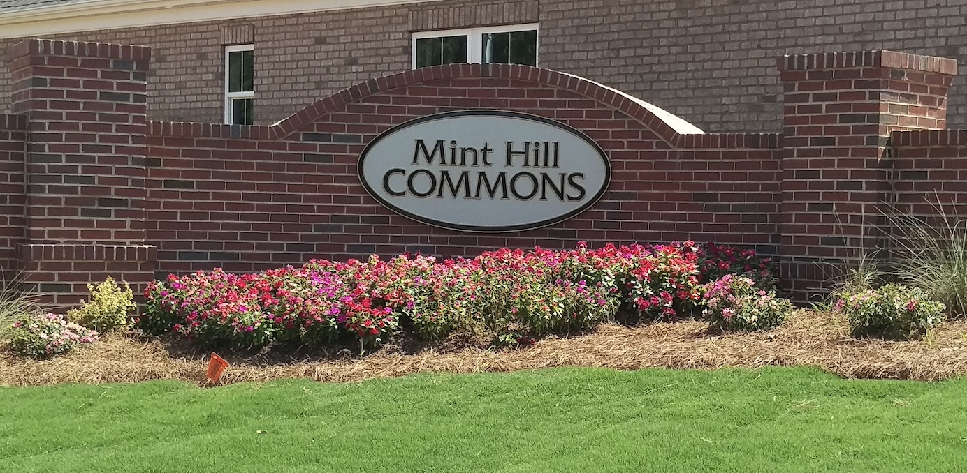 Mint Hill Commons, Pocket Cut Sign